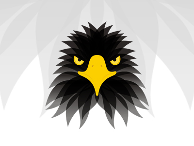 Eagle head symbol icon logo design