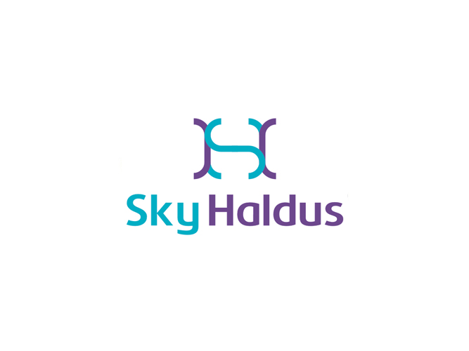 Sky Haldus internet marketing SH monogram logo design by Alex Tass