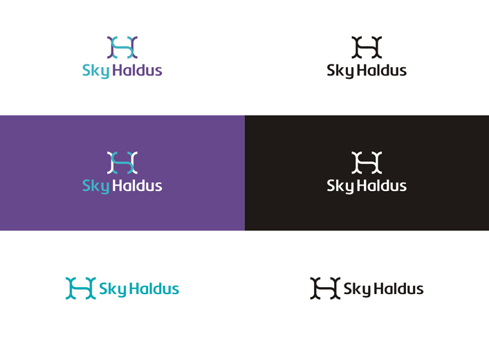 Sky Haldus internet marketing SH monogram logo design color variations by Alex Tass