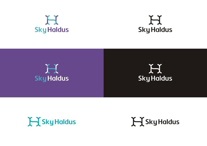 Sky Haldus internet marketing SH monogram logo design color variations by Alex Tass