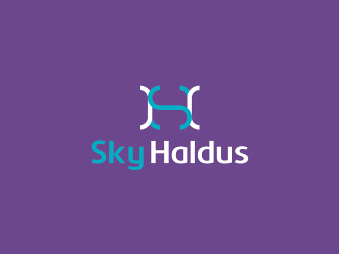Sky Haldus internet marketing reversed logo design by Alex Tass