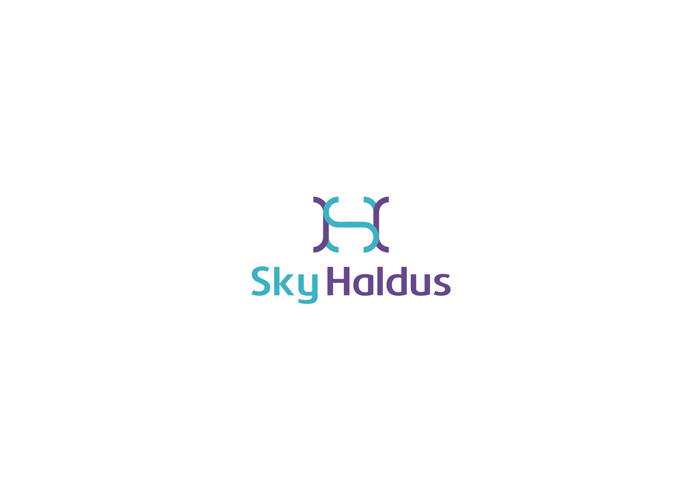 sky haldus internet online marketing logo design by alex tass