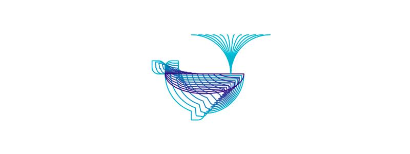 Line art whale icon illustration, identity design system by Alex Tass