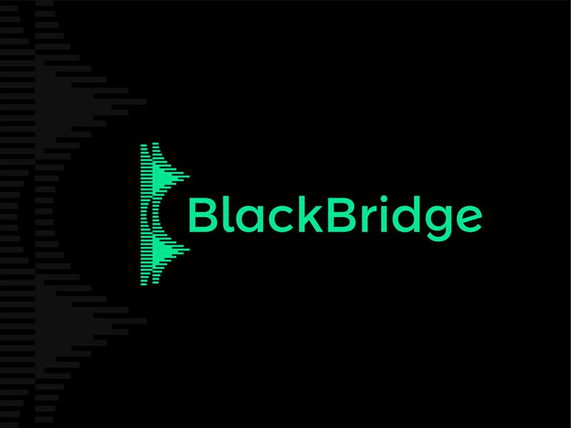 BlackBridge data abstract B letter mark BB monogram bridge logo design by Alex Tass