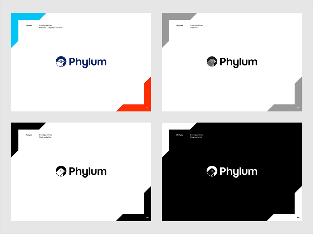 Phylum logo brand manual guidelines software composition components analytics by Alex Tass - grayscale, black and white logo variations