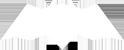 Logo designer Alex Tass bat logo